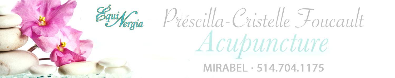 ÉquiNergia  Préscilla-Cristelle Acupuncture