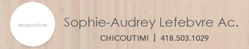 Clinique d'acupuncture Sophie-Audrey Lefebvre