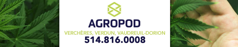 Agropod - consortium d'entreprises en Cannabis